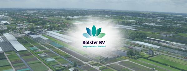 Kolster BV